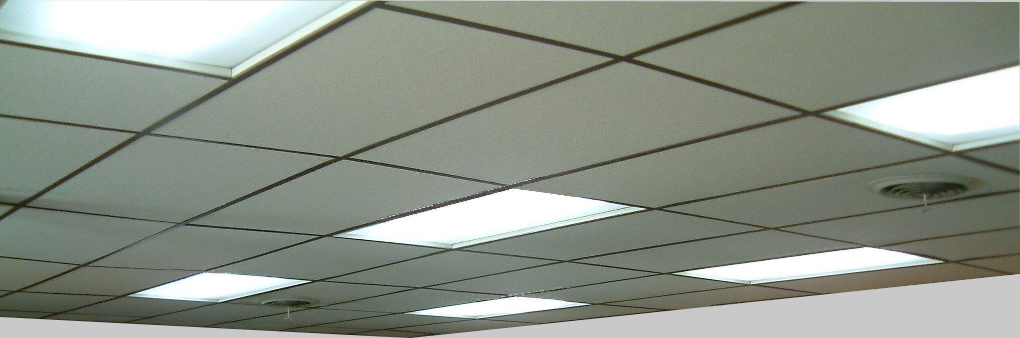 Ceiling tiles doublecrazyfo Gallery